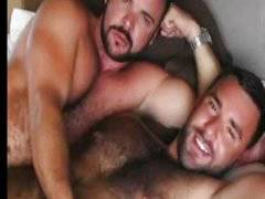 Muscle bears fuck