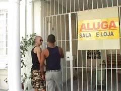 Brazilian Hot Properties