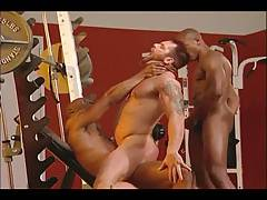 Muscle Gays Fucking Hard And Deep
