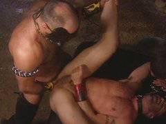 Muscular Bears Orgy
