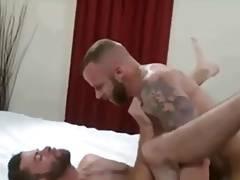 Bearded fuck 9